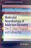 Molecular Neurobiology of Addiction Recovery : The 12 Steps Program and Fellowship, Blum, Kenneth and Femino, John, 1461472296