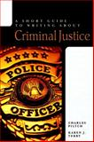 Writing about Criminal Justice, Piltch, Charles and Terry, Karen J., 0321422317