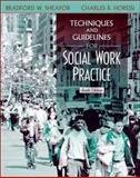 Techniques and Guidelines for Social Work Practice, Sheafor, Bradford W. and Horejsi, Charles R., 0205352316