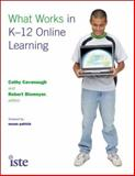 What Works in K-12 Online Learning