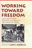 Working Toward Freedom : Slave Society and Domestic Economy in the American South, , 1878822373