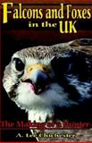 Falcons and Foxes in the U. K. : The Making of a Hunter, Chichester, A. Lee, 1401092462