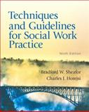 Techniques and Guidelines for Social Work Practice, Sheafor, Bradford W. and Horejsi, Charles R., 0205042473