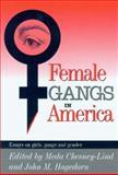 Female Gangs in America 9780941702478