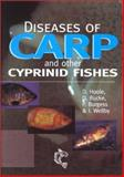 Diseases of Carp and Other Cyprinid Fishes, Hoole, David, 0852382529
