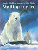 Waiting for Ice, Sandra Markle, 1580892558