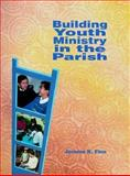 Building Youth Ministry in the Parish, Finn, Jerome, 0884892565