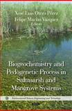 Biogeochemistry and Pedogenetic Process in Saltmarsh and Mangrove Systems, Otero Pérez, Xosé Luis and Macías Vazquez, Felipe, 1617282693