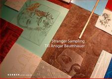 Till Ansgar Baumhauer: Stranger Sampling, Dorothee Bauerle-Willert, Friedrich Immanuel Hausen, 3866782713