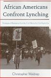 African Americans Confront Lynching, Christopher Waldrep, 074255273X