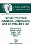 Partially Hyperbolic Dynamics, Laminations, and Teichmuller Flow, Giovanni Forni, Mikhail Lyubich, Charles Pugh, Michael Shub, 0821842749
