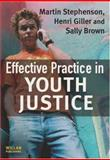 Effective Practice in Youth Justice, Martin Stephenson and Sally Brown, 184392286X