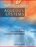 Sedimentology of Aqueous Systems 9781444332902