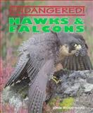 Hawks and Falcons, John Woodward, 0761402934