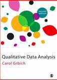 Qualitative Data Analysis 2nd Edition