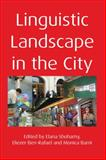 Linguistic Landscape in the City 9781847692979