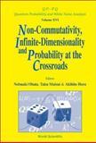Non-Commutativity, Infinite-Dimensionality and Probability at the Crossroads : Proceedings of the RIMS Workshop on Infinite-Dimensional Analysis and Quantum Probability, Kyoto, Japan, 20-22 November 2001, , 9812382976