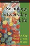 Sociology in Everyday Life 3rd Edition