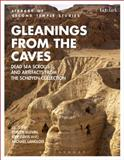 Gleanings from the Caves : Dead Sea Scrolls and Artifacts from the Schoyen Collection, Elgvin, Torleif, 0567113000