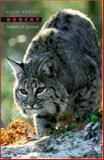 Bobcat : Master of Survival, Hansen, Kevin, 0195183037