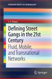Defining Street Gangs in the 21st Century : Fluid, Mobile, and Transnational Networks, Prowse, C. E., 1461443067
