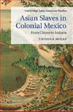 Asian Slaves in Colonial Mexico : From Chinos to Indians, Seijas, Tatiana, 1107063124