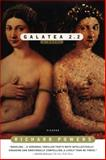 Galatea 2.2 2nd Edition