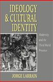 Ideology and Cultural Identity 9780745613161