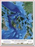 Satellite Topographic map of the San Juan Islands and Southern Gulf Islands, , 0974153168
