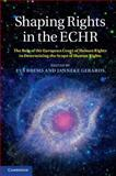 Shaping Rights in the ECHR : The Role of the European Court of Human Rights in Determining the Scope of Human Rights, , 1107043220
