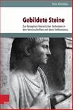 Gebildete Steine : Zur Rezeption Literarischer Techniken in Den Versinschriften Seit Dem Hellenismus, Christian, Timo, 3525253222