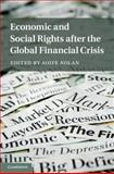 Economic and Social Rights after the Global Financial Crises, , 1107043255