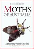 Moths of Australia, I. F. B. Common Staff, 0522843263
