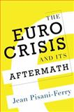 The Euro Crisis and Its Aftermath 1st Edition