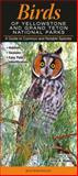 Birds of Yellowstone and Grand Teton National Parks, Quick Reference Publishing, 1936913348