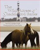 The Wild Horses of Shackleford Banks, Carmine Prioli, 0895873346