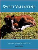 Sweet Valentine, Shelly Willis, 147725336X
