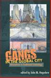 Gangs in the Global City : Alternatives to Traditional Criminology, , 0252073371