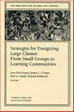 Strategies for Energizing Large Classes: from Small Groups to Learning Communities : New Directions for Teaching and Learning, , 0787953377