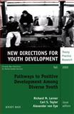 Pathways to Positive Development among Diverse Youth, Number 95 Vol. 95 : New Directions for Youth Development, Richard M. Lerner, Carl S. Taylor, Alexander von Eye, 0787963380