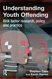 Understanding Youth Offending, Stephen Case and Kevin Haines, 1843923416