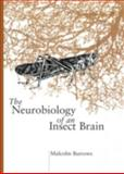 Neurobiology of an Insect Brain, Burrows, M., 0198523440