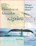 Elementary and Intermediate Algebra 9780201753462
