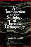 An Introduction to the Sociology of Juvenile Delinquency, Musick, David, 0791423522