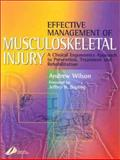 Effective Management of Musculoskeletal Injury : A Clinical Ergonomics Approach to Prevention, Treatment and Rehabilitation, Wilson, Andrew, 0443063532