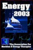 AMT Conference Manual 2003 9781873483534