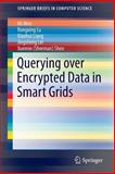Querying over Encrypted Data in Smart Grids, Wen, Mi and Lu, Rongxing, 3319063545