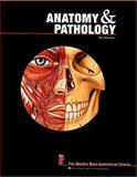 Anatomy and Pathology, Anatomical Chart Company, 0781773563