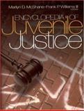 Encyclopedia of Juvenile Justice 9780761923589