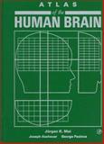 Atlas of the Human Brain, Juergen K. Mai, Joseph K. Assheuer, George Paxinos, 012465360X